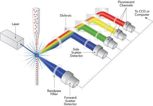 optics design-flow cytometer